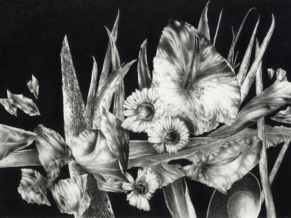 floral-s1.2