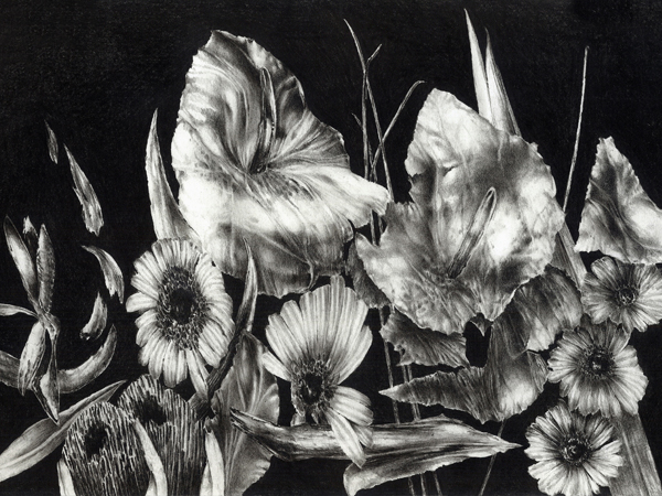 floral-s1.3